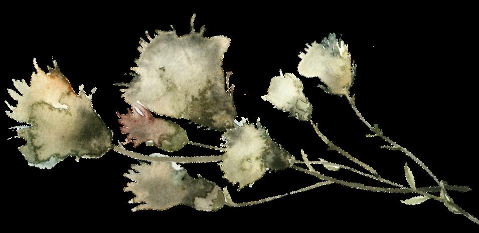 white flowers, sad